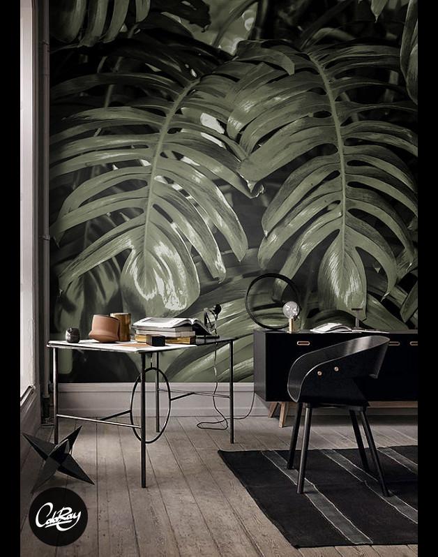 fototapeta-liście-bananowca-dżungla