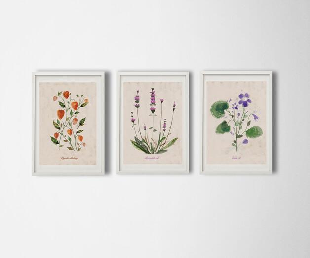 ilustracje-botaniczne-greenery-kolor-roku