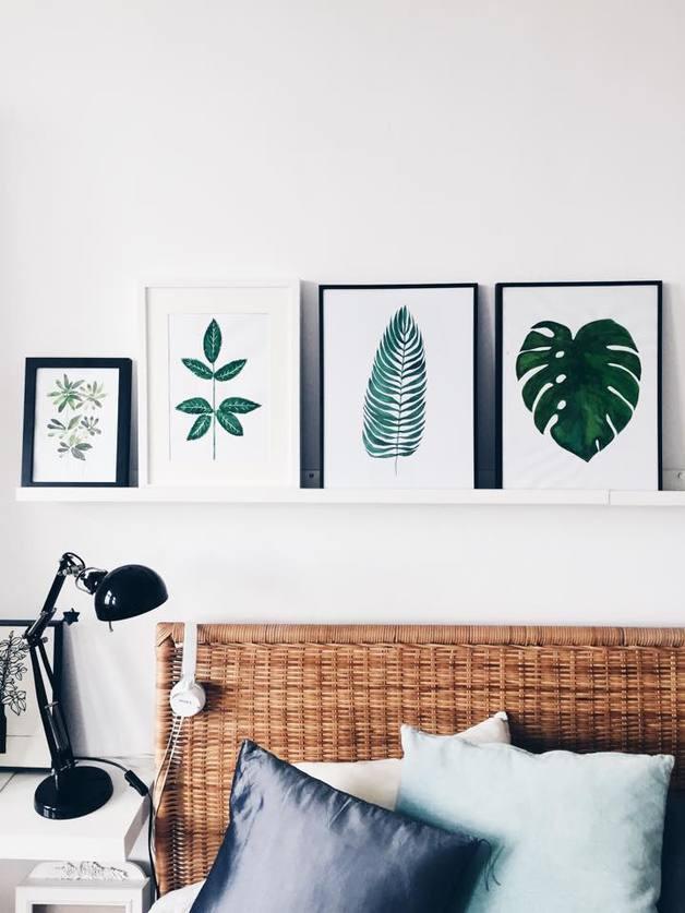 plakat-monstera-dżungla-paproć