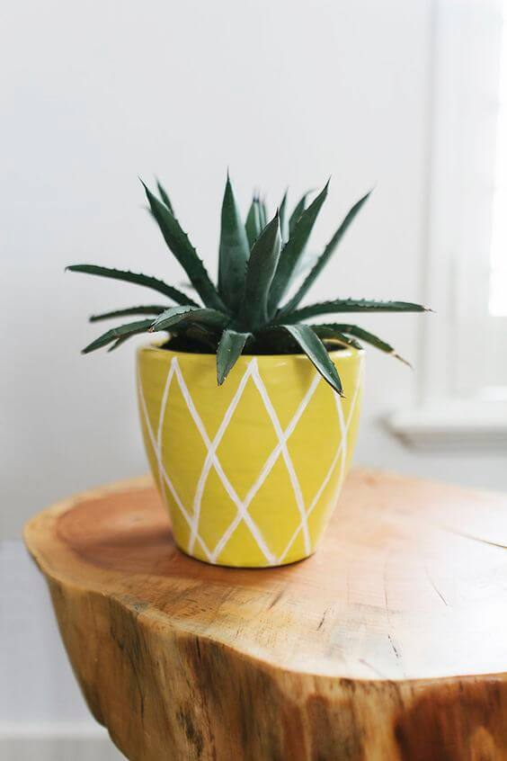 donica ananas