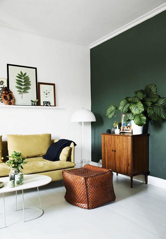 butelkowa zieleń na ścianie