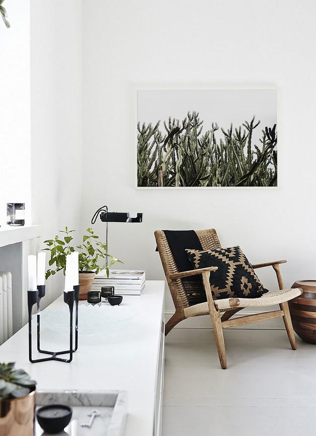 plakat-obraz-wydruk-kaktus-dom-ściana-ozdoba