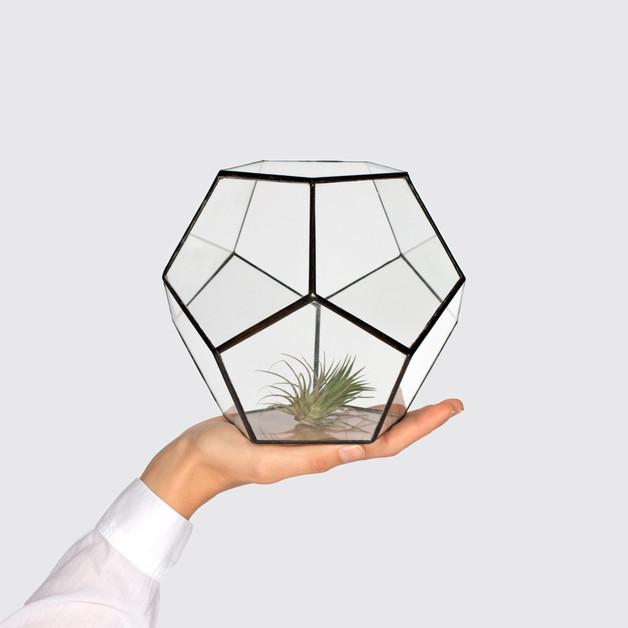 szklarnia-doniczka-kwiaty-rośliny-kaktus-donica-wazon-terrarium