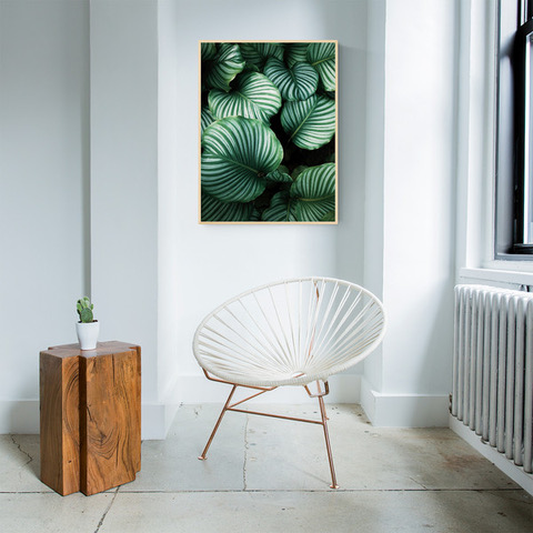 obraz rośliny