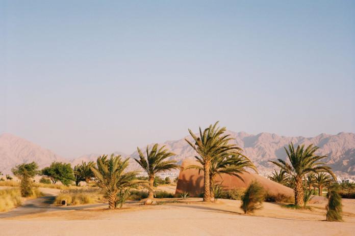 Klub golfowy w Jordanii architektura inspiracje naturą palmy pustynia góry