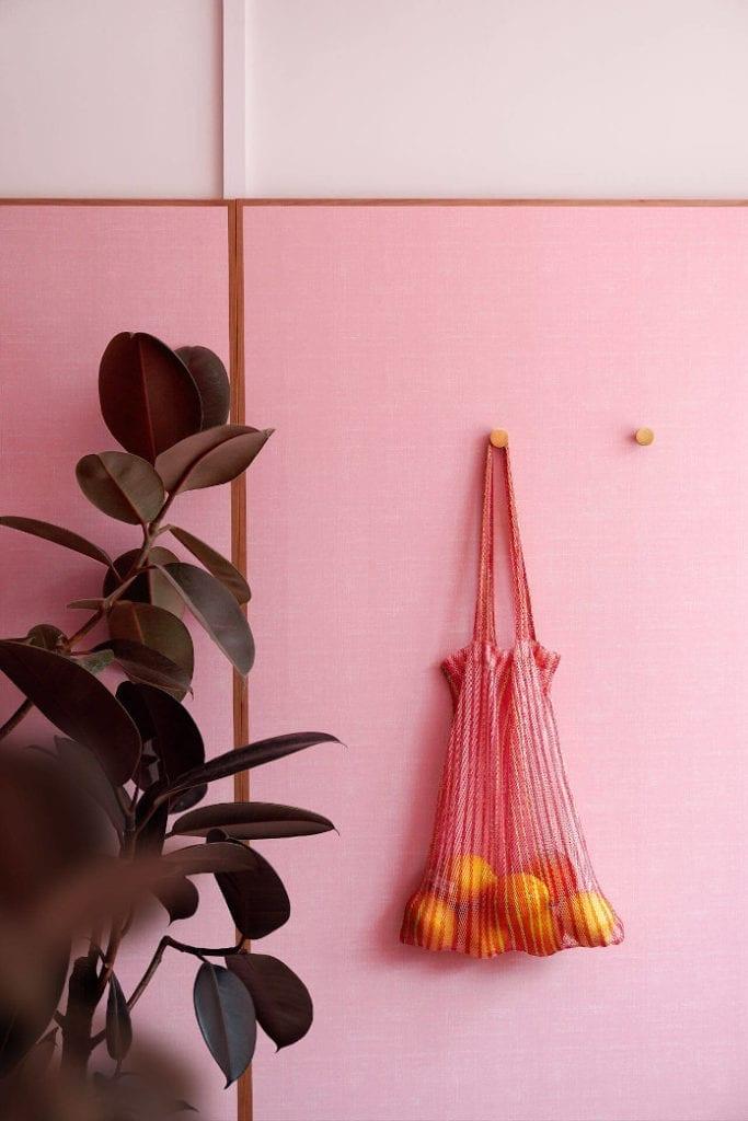 Formika ściany róż fikus we wnętrzu