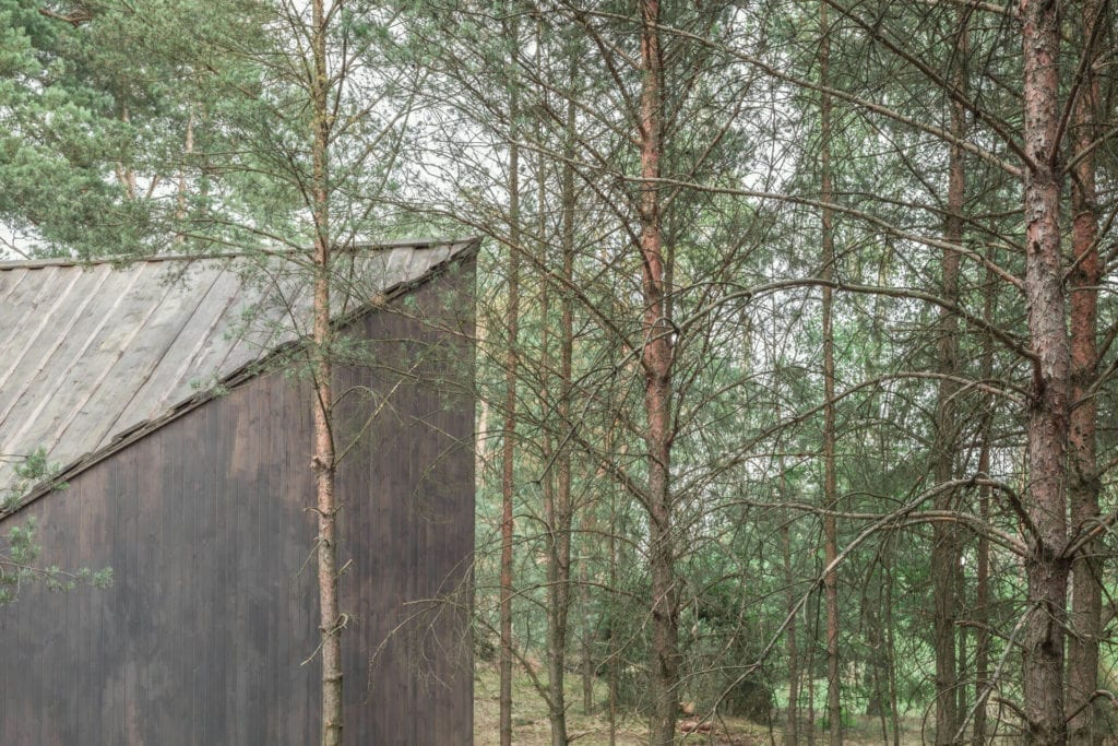 Las drewno Bookworm Cabin Adelin Warszawa
