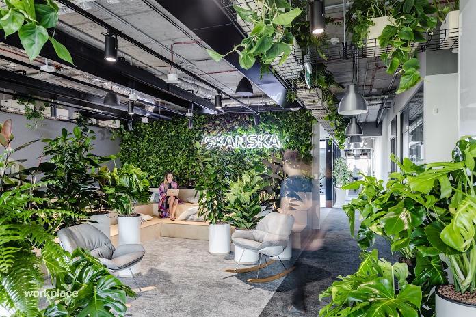 Skanska okk design przestrzeń publiczna rośliny we wnętrzu fotel wizualizacja