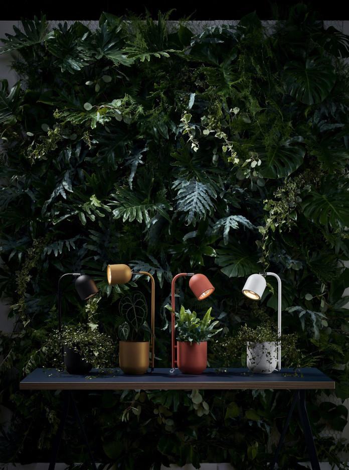 botanica lampa na biurko inspiracje zieleń doniczka prezent trendy wnętrzarskie