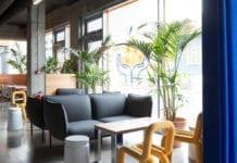 japońska-restauracja-na-islandii-inspiracje-sofa-żółte-krzesło-palmy-piękno-i-minimalizm