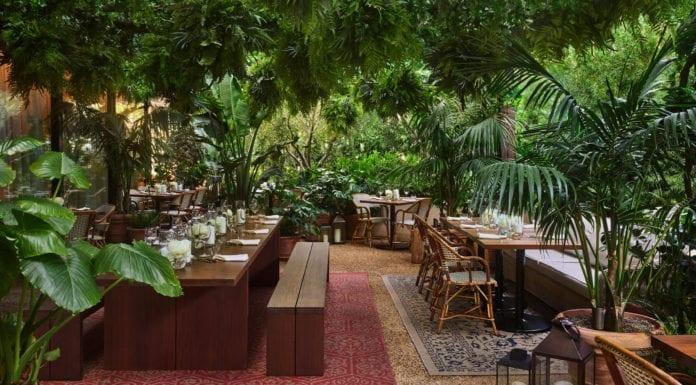 ogród-hotel-restauracja-inspiracje-drewno-luskusowy-rośliny