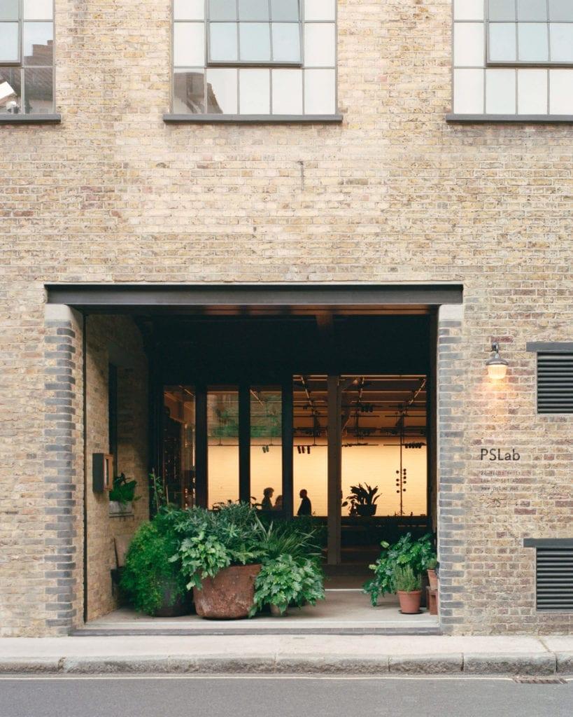okna-inspiracje-rośliny-budynek-elewacja