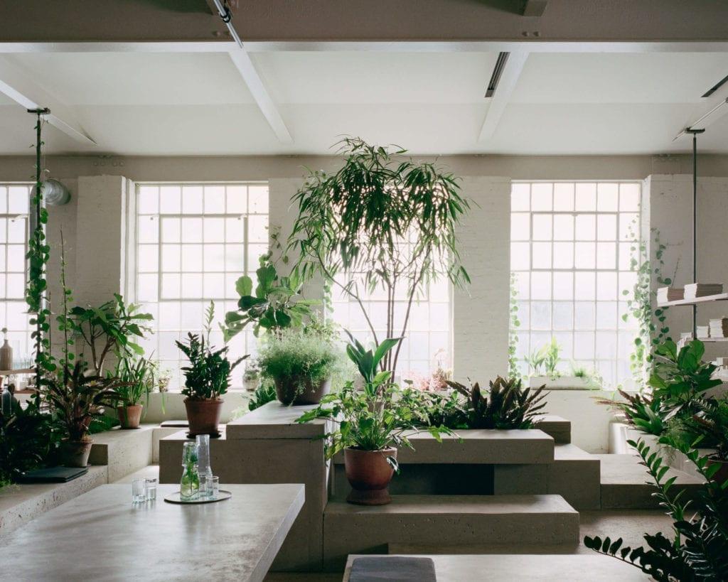 miejsce-do-pracy-biuro-inspiracje-wnętrze-rośliny-beton-industrial