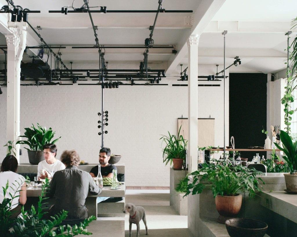miejsce-pracy-inspiracje-beton-rośliny