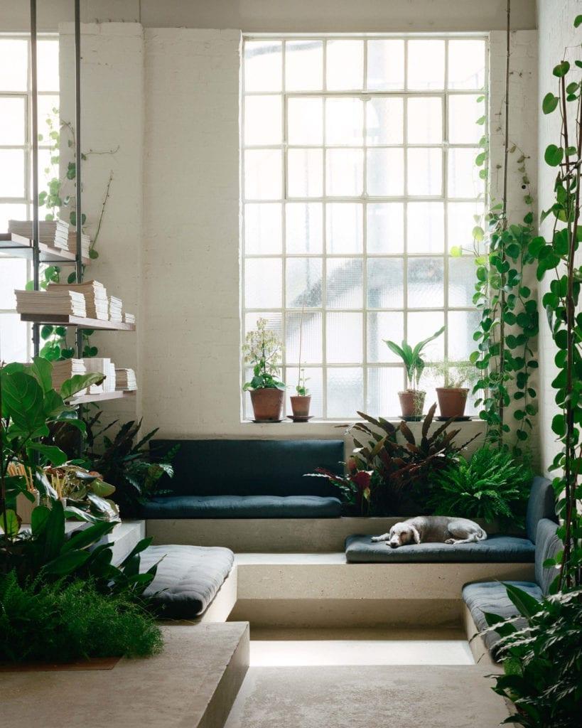 miejsce-do-pracy-strefa-wypoczynkowa-rośliny-beton