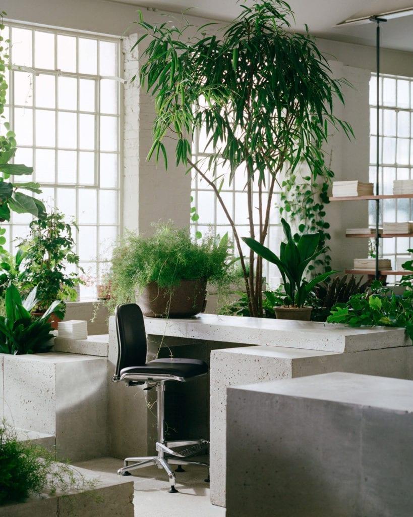 miejsce-do-pracy-biuro-inspiracje-wnętrze-rośliny-beton-industrial-krzesło-biurko