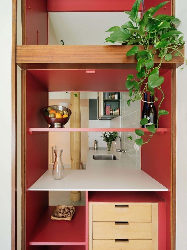 drewniana-półka-inspiracje-roślina