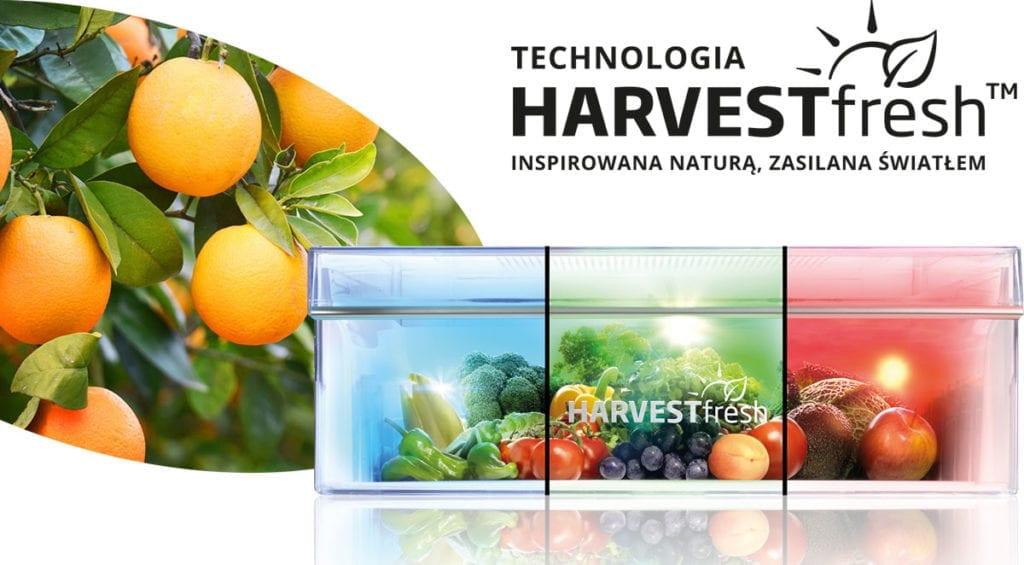 jak-zachować-witaminy-na-dłużej-inspiracje-lodówka-beko-harvestfresh