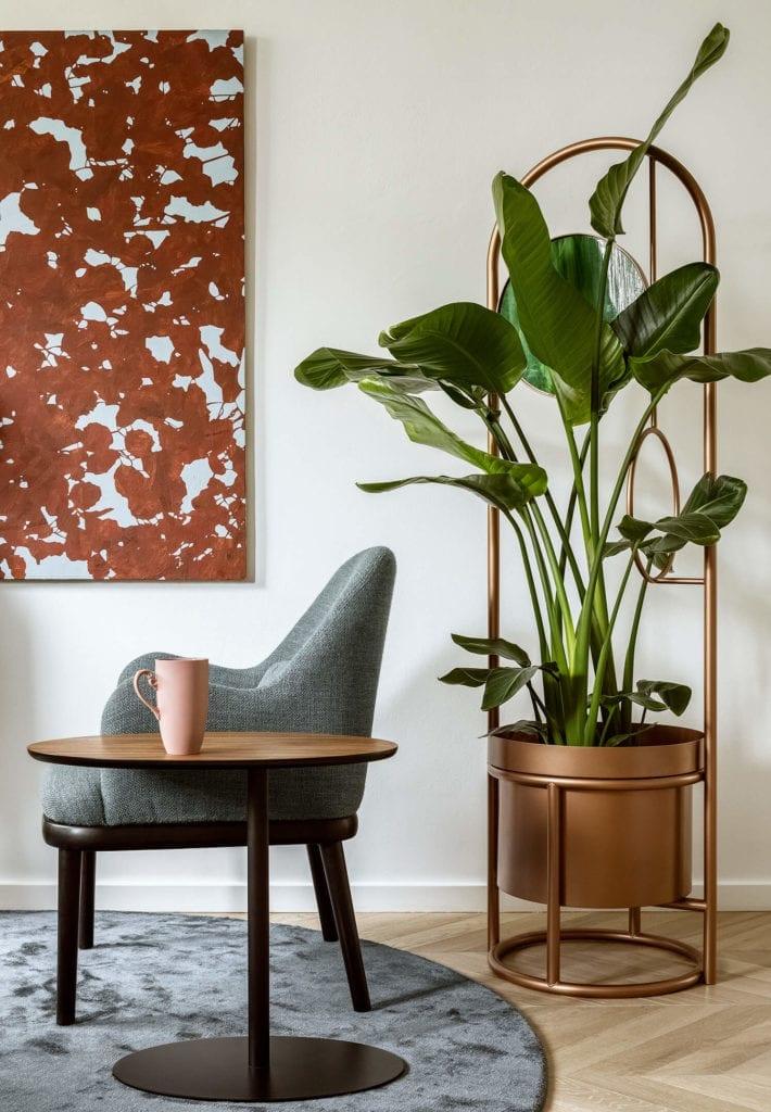 stół-dywan-inspiracje-krzesło-rośliny-doniczki